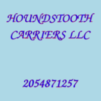 HOUNDSTOOTH CARRIERS LLC