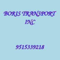 BORIS TRANSPORT INC